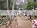 森のこども館2