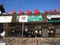 上野動物園2013